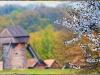 Киев. Музей под открытым небом в Пирогово landscape-2010-1-of-4
