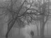 landscape-fotosova-20-of-70