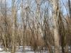 landscape-fotosova-22-of-70