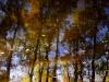 landscape-fotosova-42-of-70