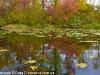 landscape-fotosova-46-of-70