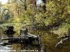 landscape-fotosova-49-of-70