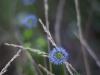 photographer-day_yuliya_druzhynina_2