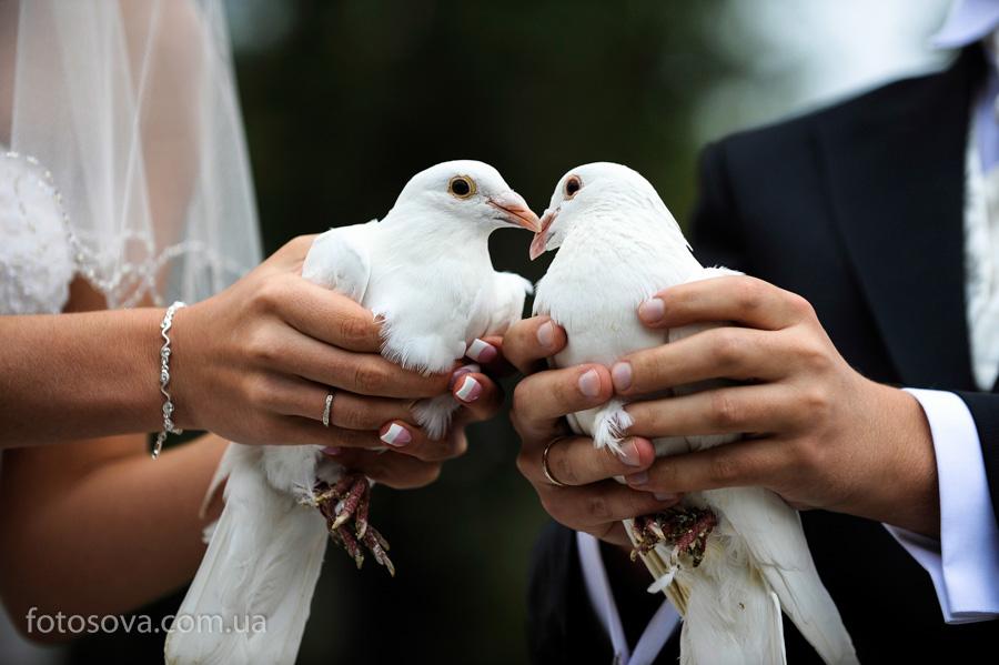 wedding_photographer_-3