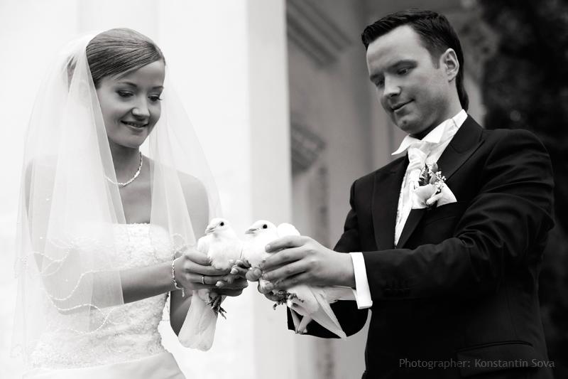 Актеры фарфоровой свадьбы