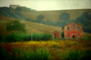 пейзаж. фотограф Константин Сова