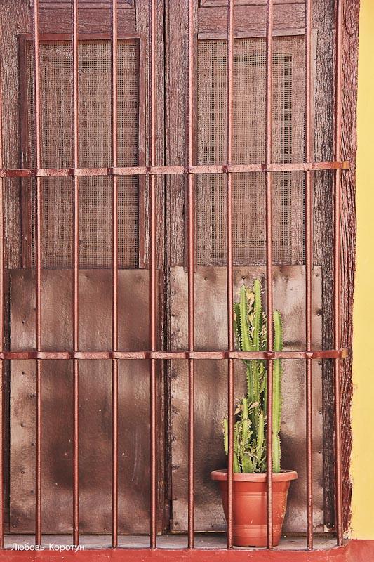 Куба. фотограф: Любовь Коротун
